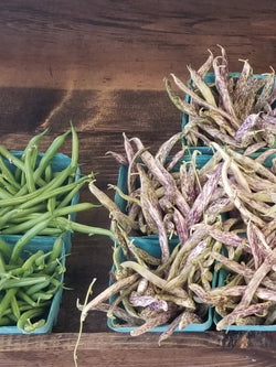 Greenbeans or Purple Dragon Wax Beans - 1 pint