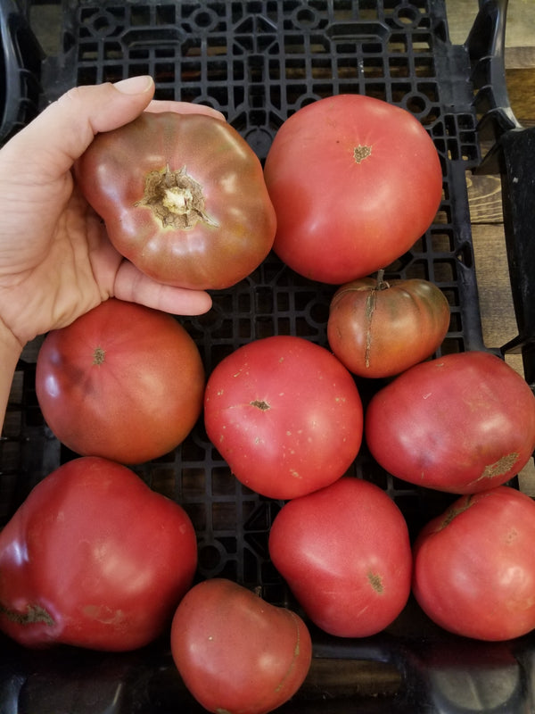 Heirloom Tomatoes - 1 lb - Naturally grown by Bountiful Beloit