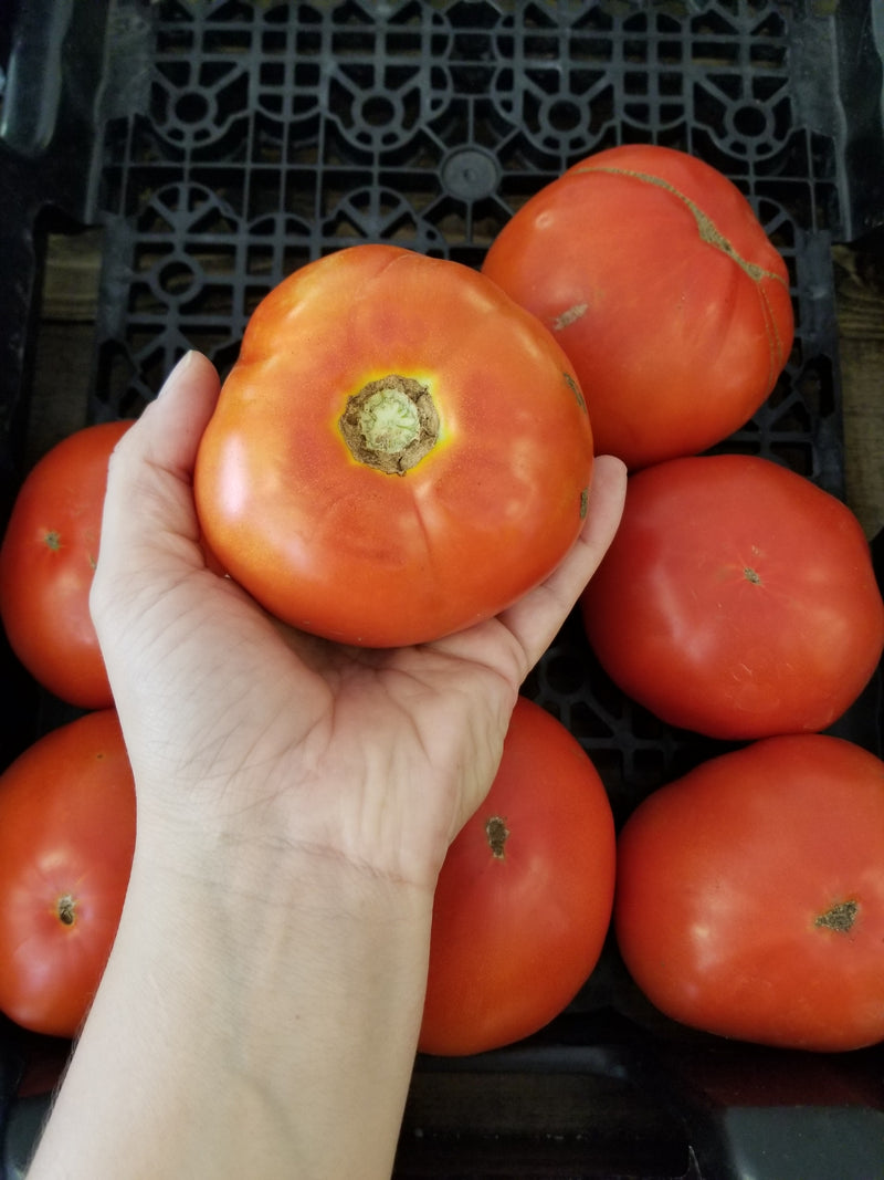 Slicing Tomatoes - 1 lb - Naturally grown by Bountiful Beloit