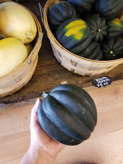 Acorn Squash - 1 large - Bountiful Beloit