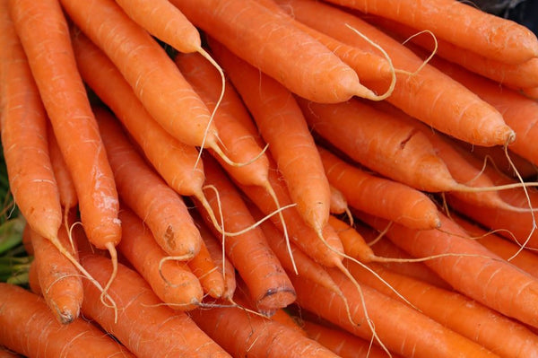 Organic Carrots (priced per pound) - grown by Tipi Produce in Evansville
