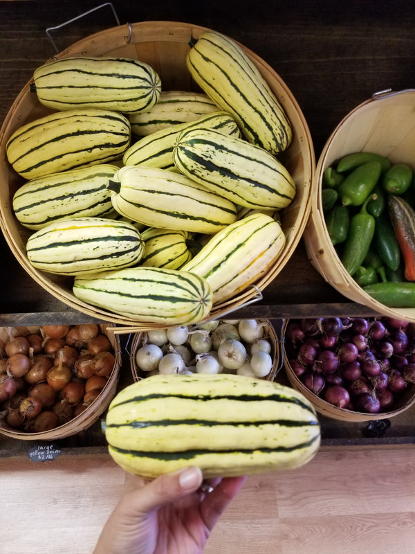 Delicata Squash - Grown by Bountiful Beloit