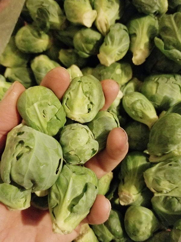 Brussels Sprouts - 1/2 lb - (grown by Tipi Producein Evansville)