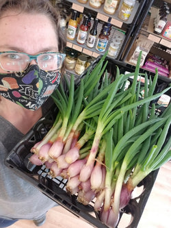 Green Onions (priced per bunch of ~3)