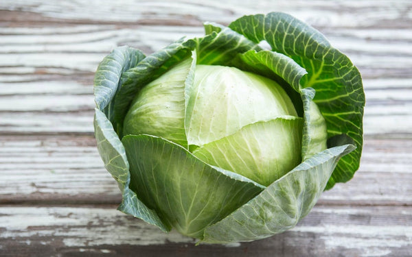 1 Medium Cabbage - naturally grown by Bountiful Beloit
