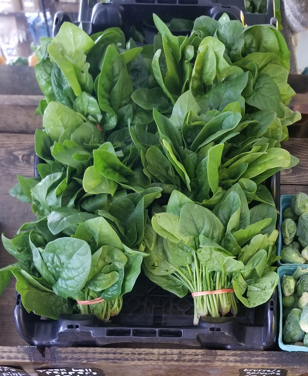 Spinach (grown by Bountiful Beloit) - ~5oz