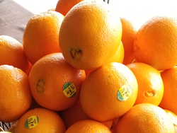Organic Oranges - 1 each - Product of the USA