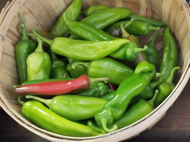 Anaheim Peppers - Naturally grown by Bountiful Beloit