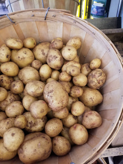 New Potatoes (Yukon Gold) - 1 lb - Naturally grown by Bountiful Beloit