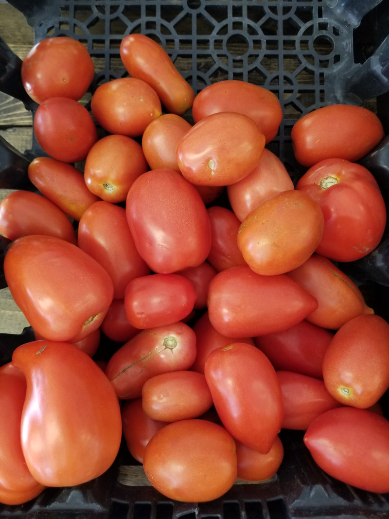 Roma Tomatoes - 1 lb - Naturally grown by Bountiful Beloit