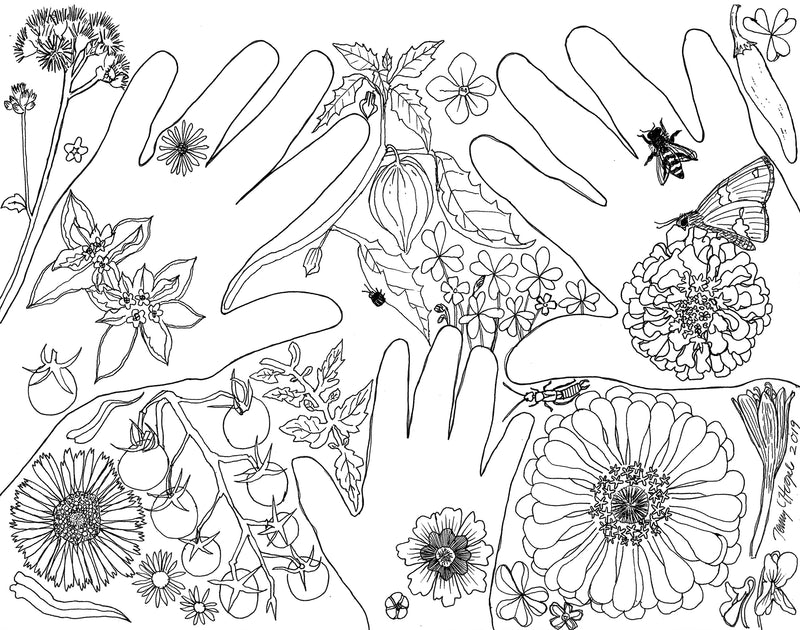 Coloring Pages - Wild Wisconsin