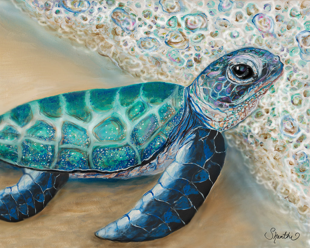 sea turtle prints, painted turtle, green sea turtle, baby turtles