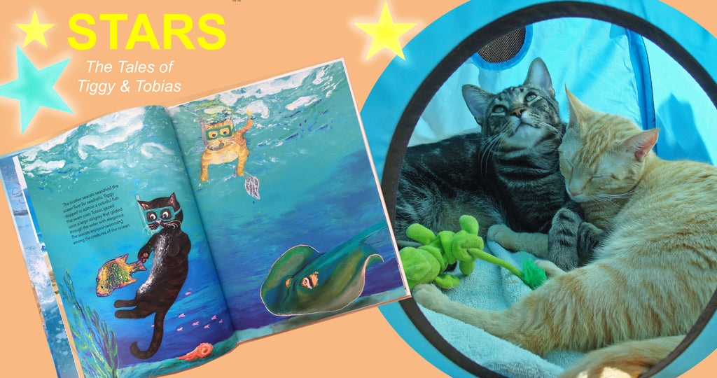 swimming cat, bedtime stories, children stories,
