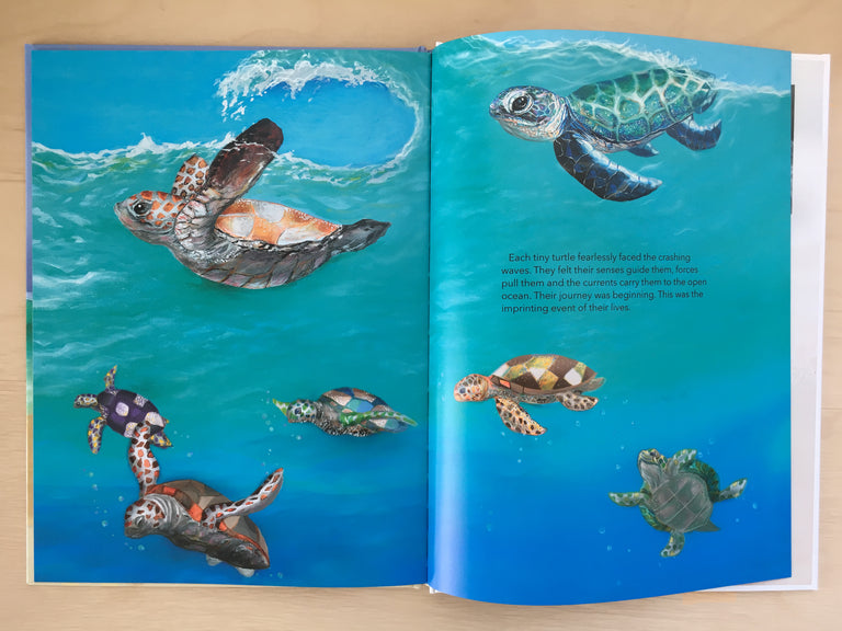 turtle book, turtle story for kids, sea turtles hatching, ocean books, ocean stories for kids, children's books,