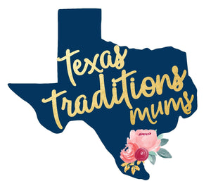 Texas Traditions Mums