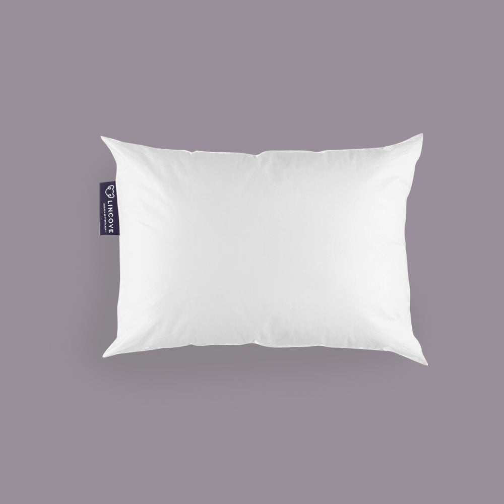 The Mini Pillow