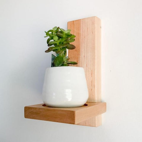 a maple wood plant shelf attached to the wall with a single plant in a small white planter