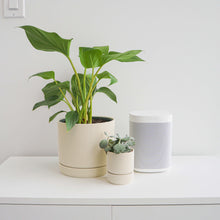 Load image into Gallery viewer, Hemlock Planters - White