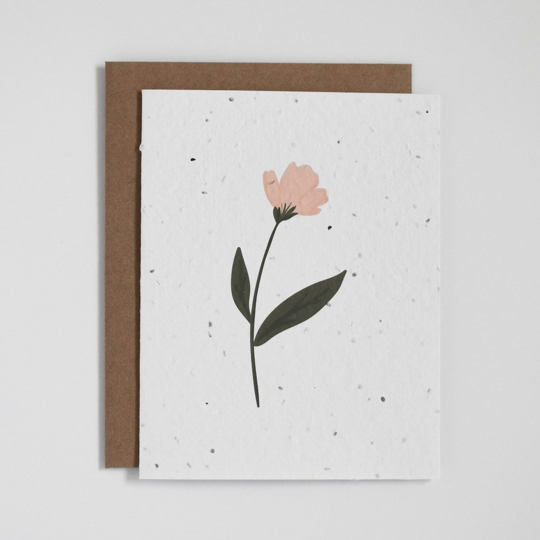Colourful Floral Seed Paper Cards