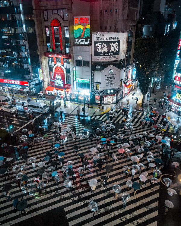 Rainy Nights at Shinjuku Crossing
