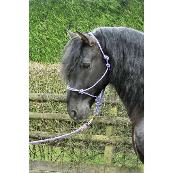 KM Elite Rope Halter