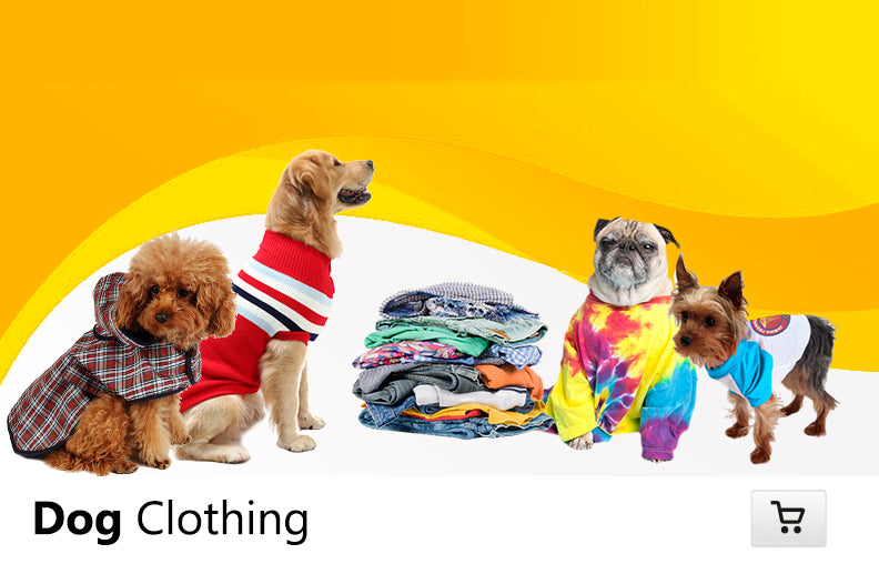 Dog Clothing Online
