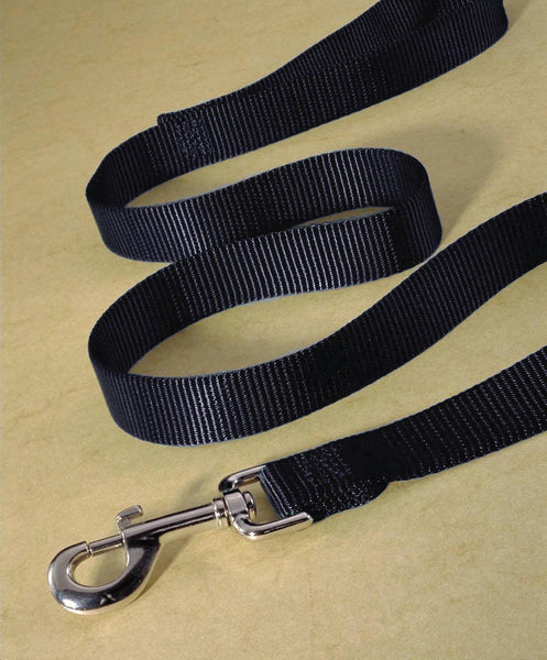 Single Thick Nylon Lead - Wagging Online