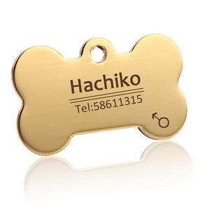 Golden Bone Pet ID Tag - Wagging Online