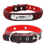 Engraved Dog ID Collar - Wagging Online