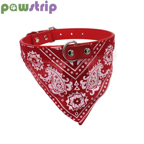 Small Dog Collar With Bandanna - Wagging Online