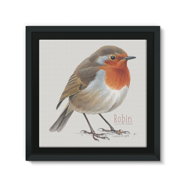 Robin Framed Eco-Canvas