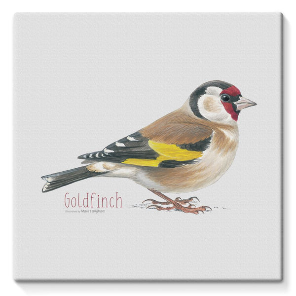 Goldfinch Stretched Eco-Canvas