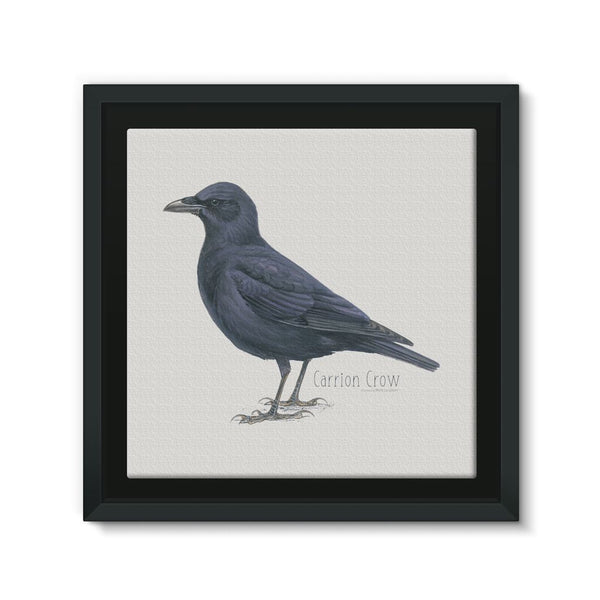 Carrion Crow Framed Eco-Canvas