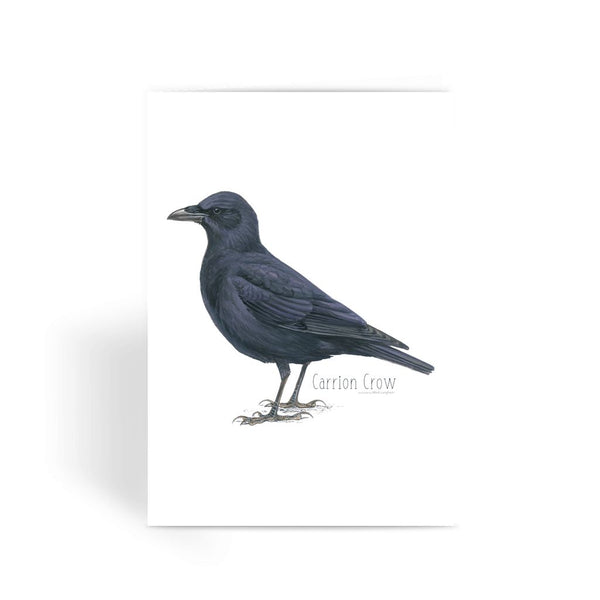 Carrion Crow Greeting Card