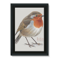 Robin Framed Canvas