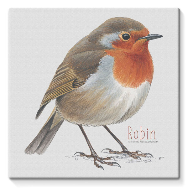 Robin Stretched Eco-Canvas