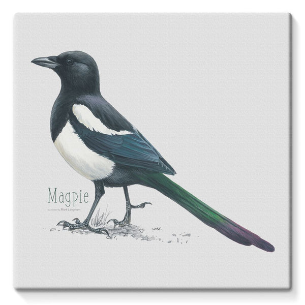 Magpie Stretched Eco-Canvas