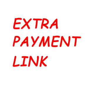 Extra Payment Link