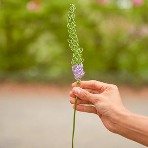 "Lavender Veronica - Speedwell ""Tubular Flowers"" - One Million Roses"