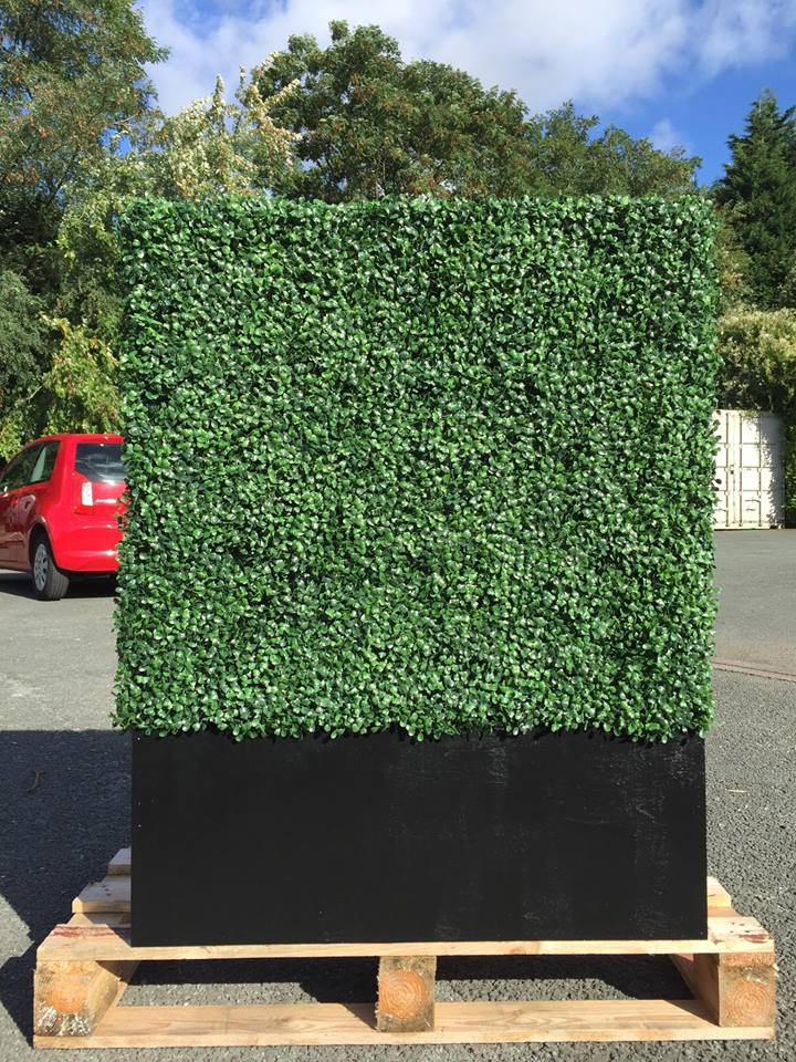 Ready Made Artificial Boxwood Hedging Planters Available To Buy Now