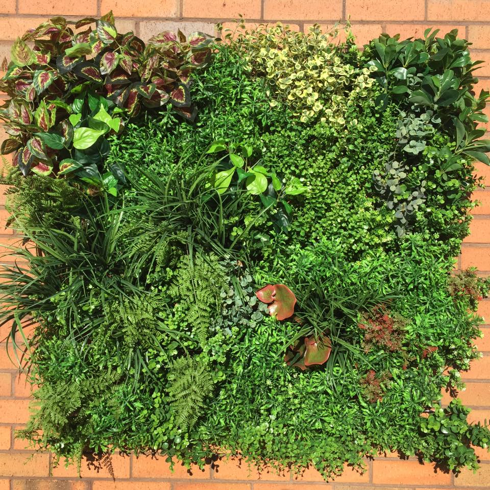 Go Green with a Living Wall