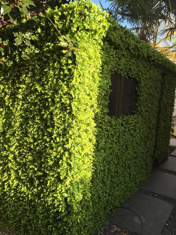 Disguising a garden shed as a hedge with artificial foliage