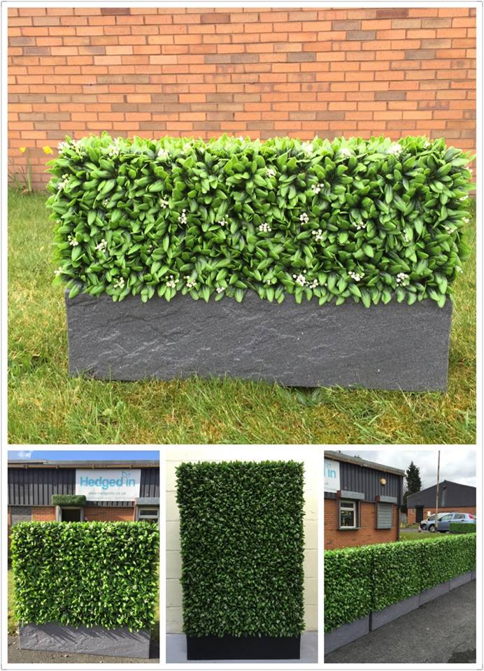 Hedged In – Reputation for Quality Artificial Hedges