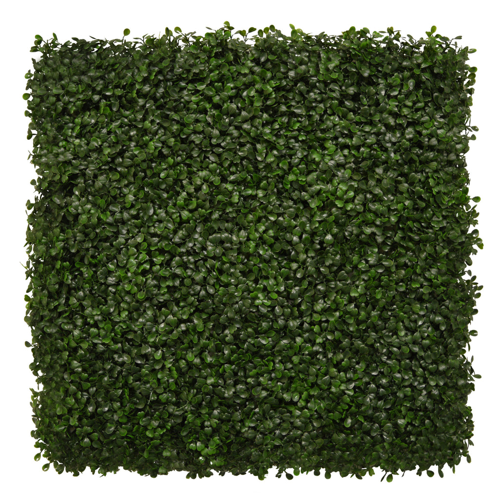 Artificial Boxwood Hedging Panel 50cm X 50cm - Hedgedin