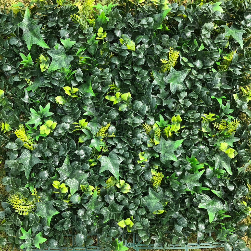 Artificial Ivy Bush 25cm x 25cm Sample - Hedgedin