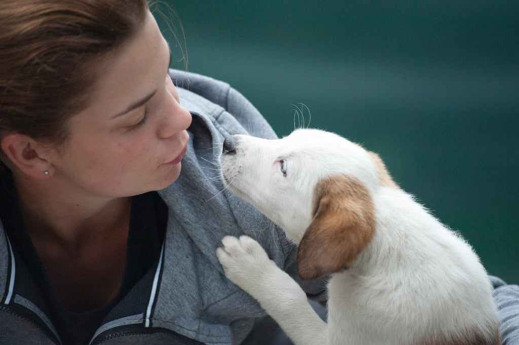 How Pets Benefit Our Emotional Well-Being