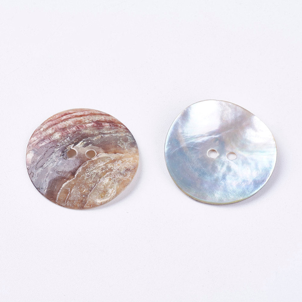 5 Large Shell Buttons - 1 inch - 25mm