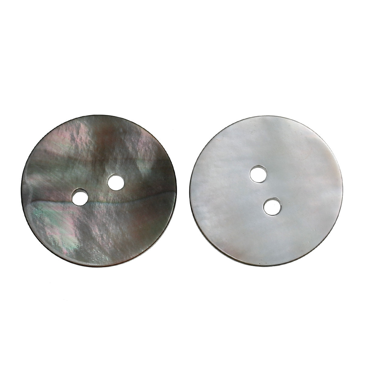 2 Extra Large Shell Buttons - 2 inch - 5cm