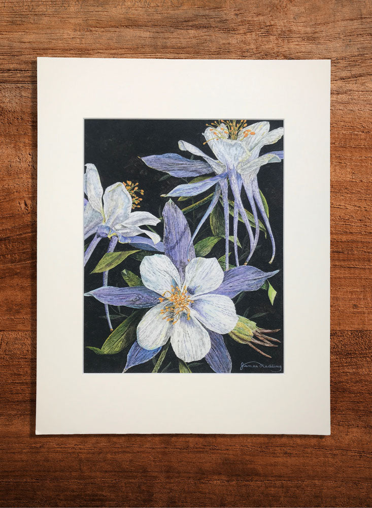 purple columbine small floral painting