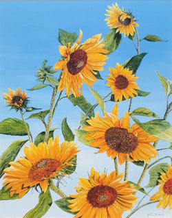 sunflower morning small art painting